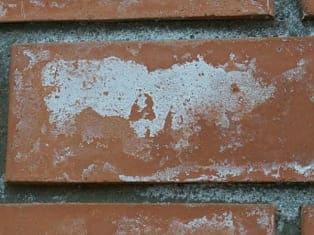 Высолы поверхностей бетонных изделий